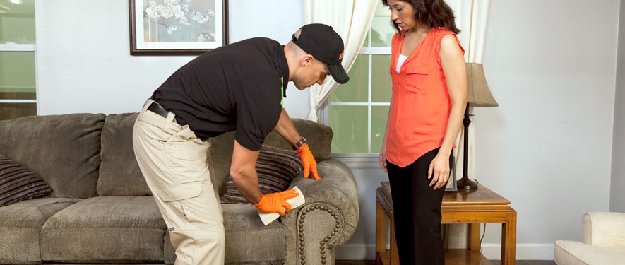 Mission Viejo, CA carpet upholstery cleaning