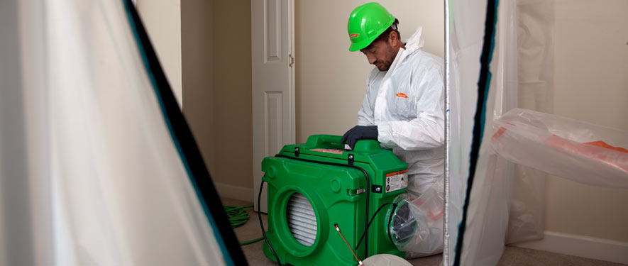 Mission Viejo, CA mold cleanup